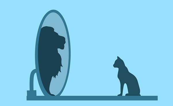 gato-frente-a-espejo-se-cree-leon
