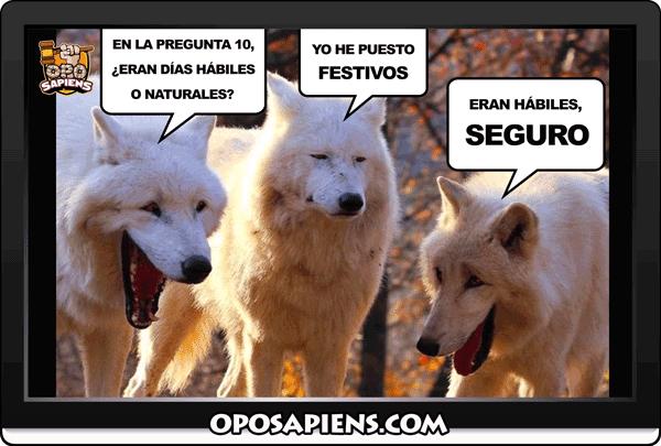 meme-oposapiens-lobos-comentando-el-examen-de-la-oposicion